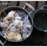 Teinture végétale – baies de lierre