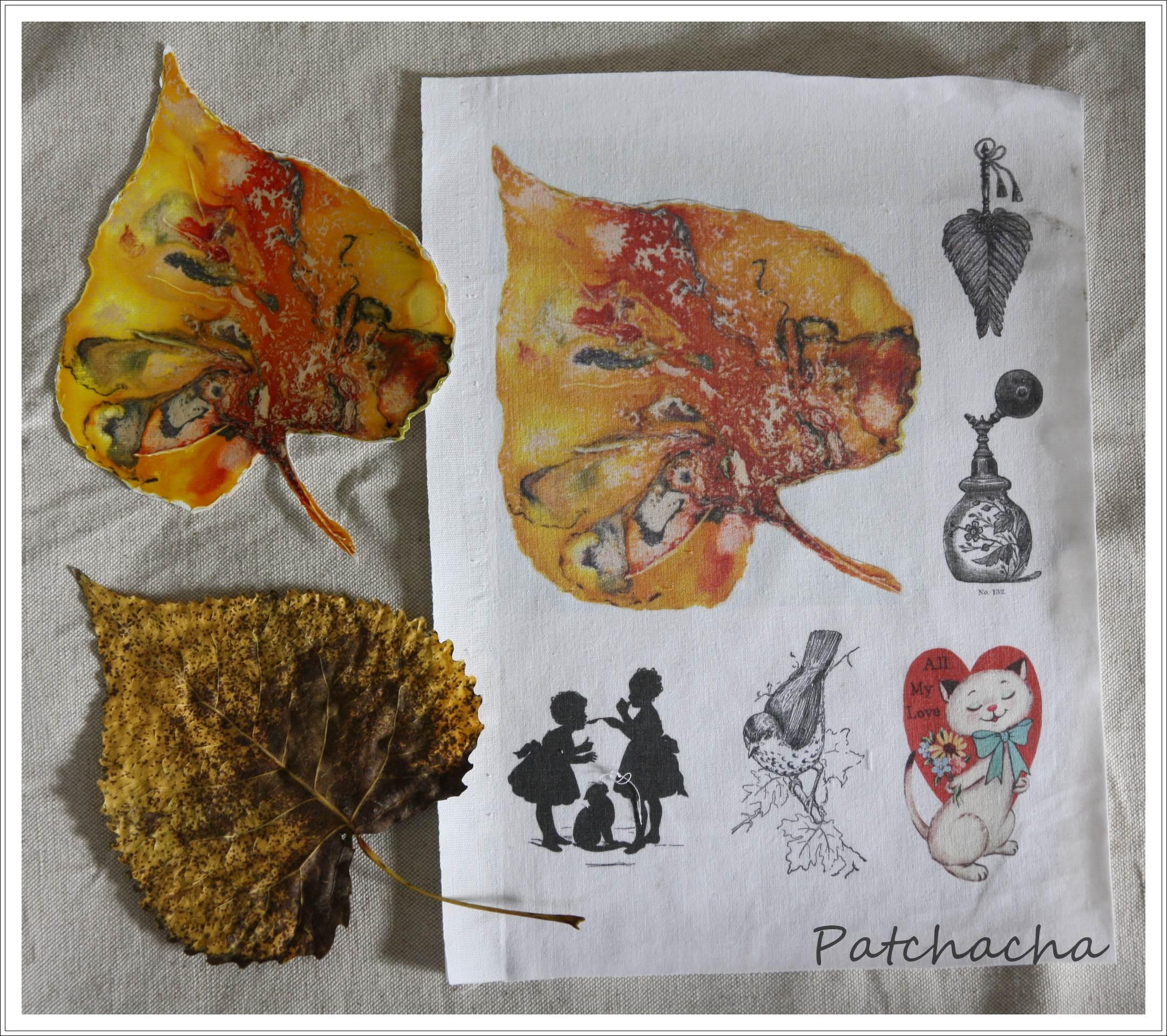 Impression jet d 39 encre sur tissu le blog de patchacha - Imprimer photo sur tissu ...
