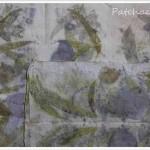 Eco print 3 – cotinus et cuisson vapeur