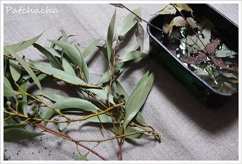 teindre avec des feuilles séchées