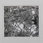 Des fils et des fibres – triptyque