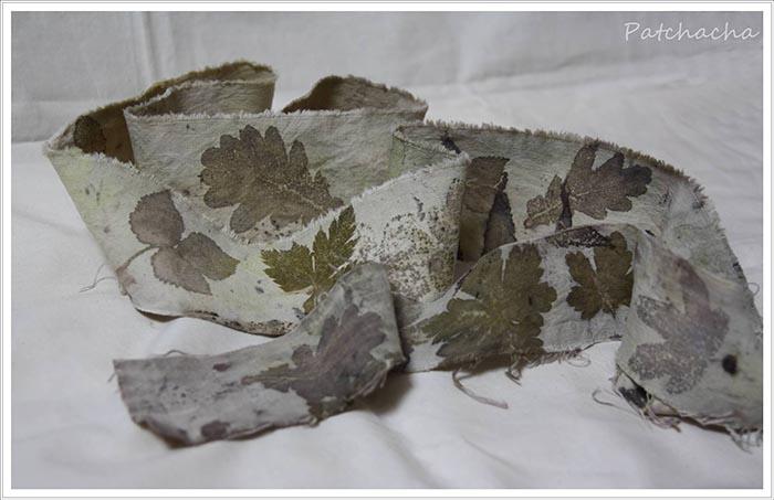 empreintes de feuilles