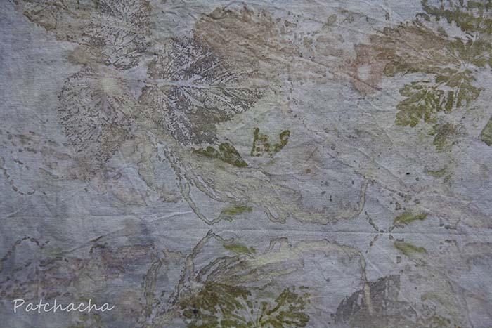teinture végétale et empreintes de feuilles