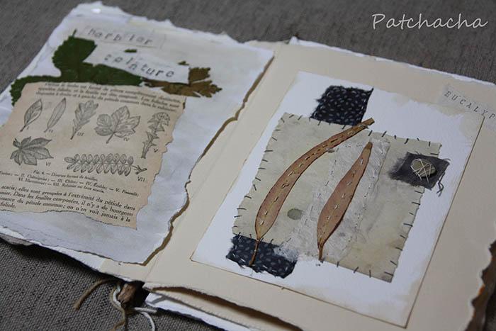 herbier teinture