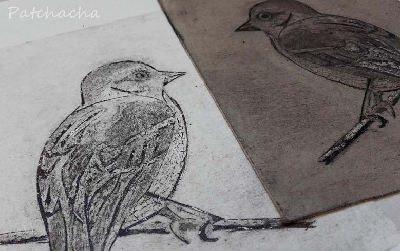collagraphie, oiseau
