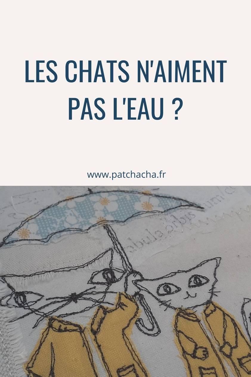 La véritable histoire du Chat – Chantons sous la pluie