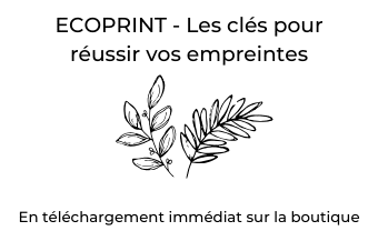 guide ecoprint
