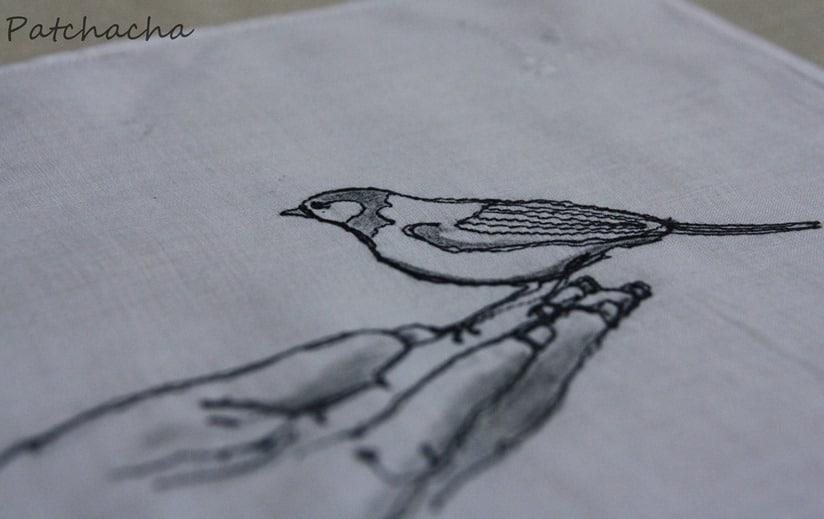 oiseau piqué libre