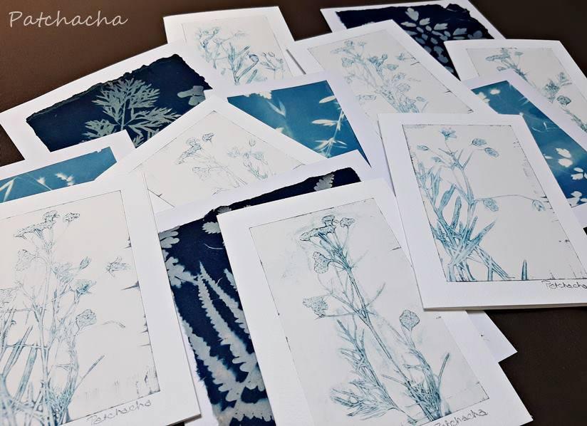 cartes botaniques